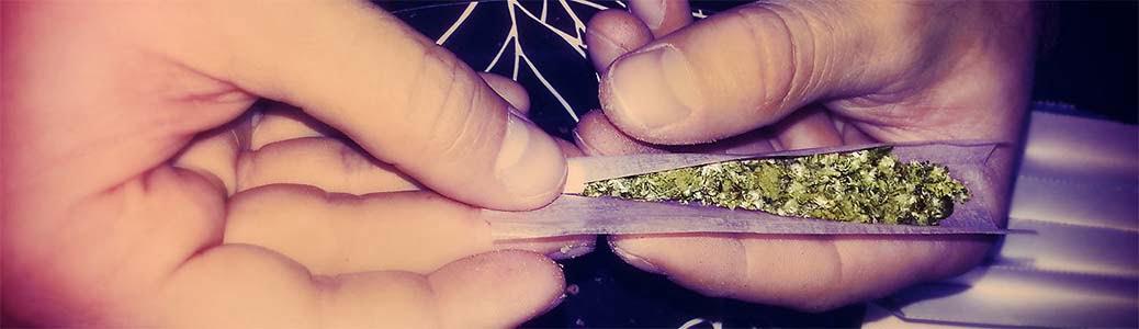 Cannabis, spinello