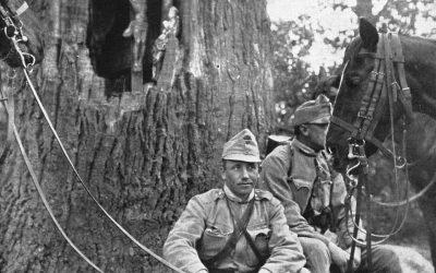 Austria, 1915. Truppe austro-ungariche sul Fronte Orientale. L'11 novembre 1918 l'Armistizio di Compiègne segna la fine della prima guerra mondiale. Fede e guerra non conoscono fronte.