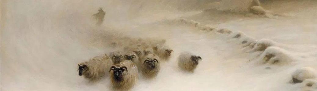 Gunnarsson, il pastore-islanda - Joseph Farquharson